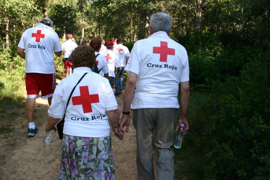 42.900 Voluntarios Para Mejorar La Calidad De Vida De Los Mayores