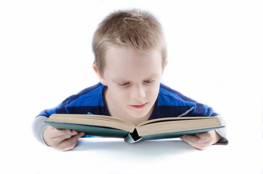 Talleres De Lectura Inclusivos