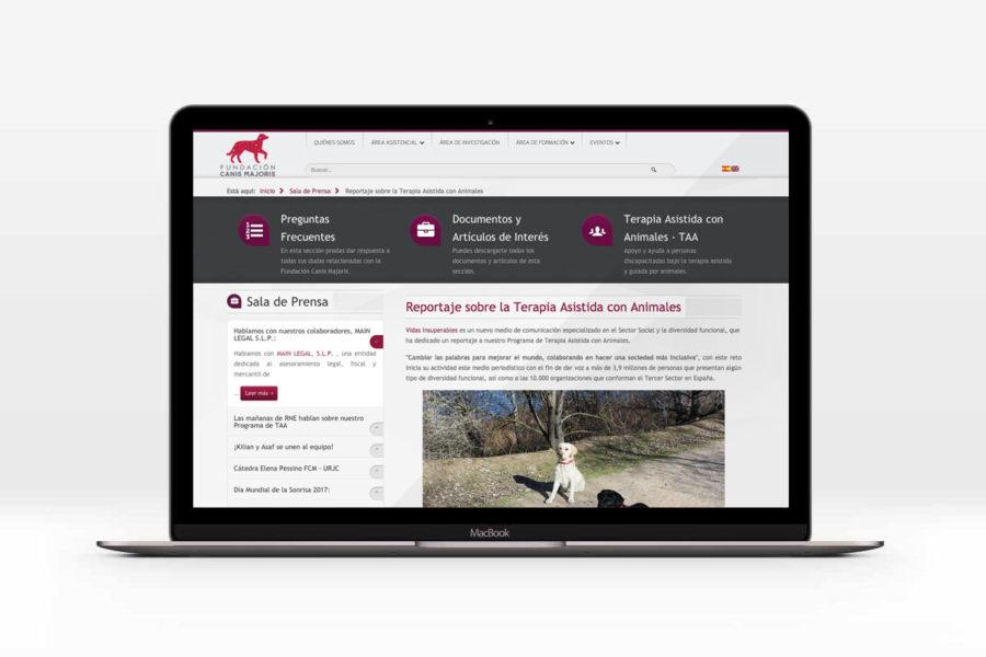 La Fundación Canis Majoris Publica En Su Web El Reportaje De Vidas Insuperables Sobre Los Perros Terapéuticos