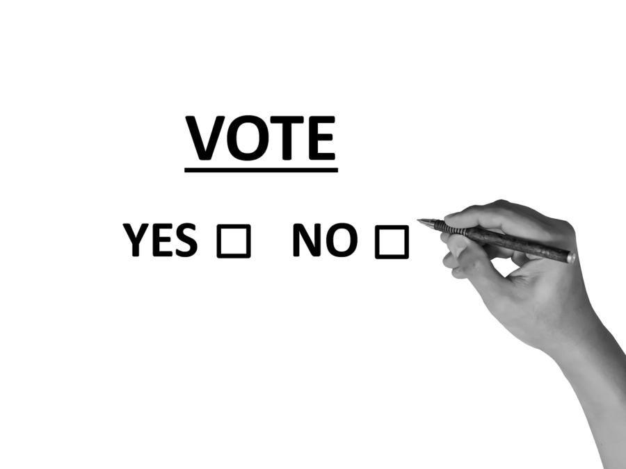 Voz Unánime Para Que 100.000 Personas Con Discapacidad Puedan Ejercer Su Derecho Al Voto