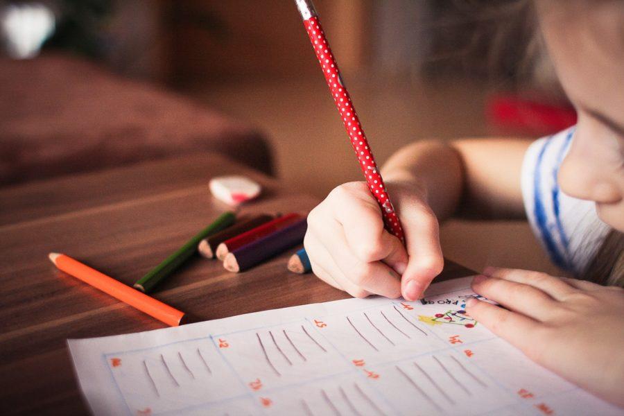 El 20% De Los Alumnos Con Discapacidad Aún Estudian En Centros De Educación Especial