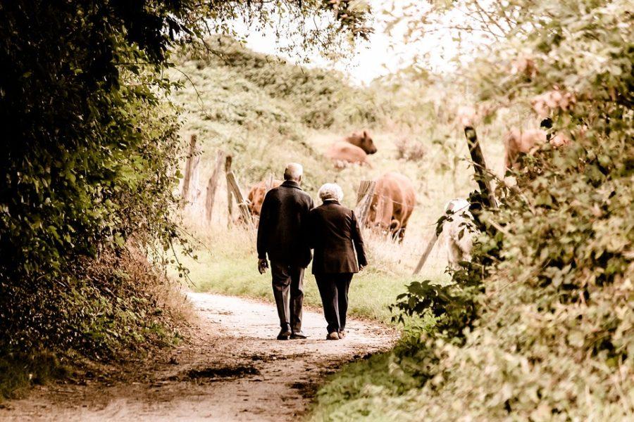 Llevar Hábitos De Vida Saludables Podría Reducir Hasta Un 40% Los Casos De Alzheimer