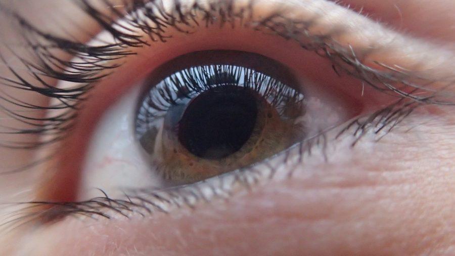 El 'glaucoma De Los Niños', Una Patología Anónima