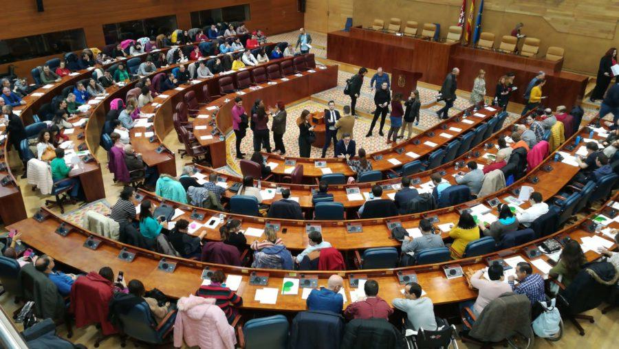 La Inclusión Logra Mayoría Absoluta En La Asamblea De Madrid