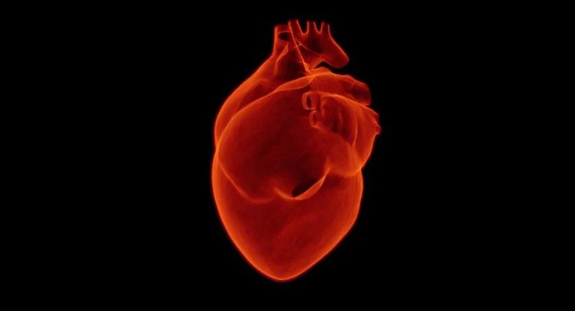 La Mortalidad Hospitalaria Por Infarto De Miocardio Se Ha Duplicado Durante La Pandemia