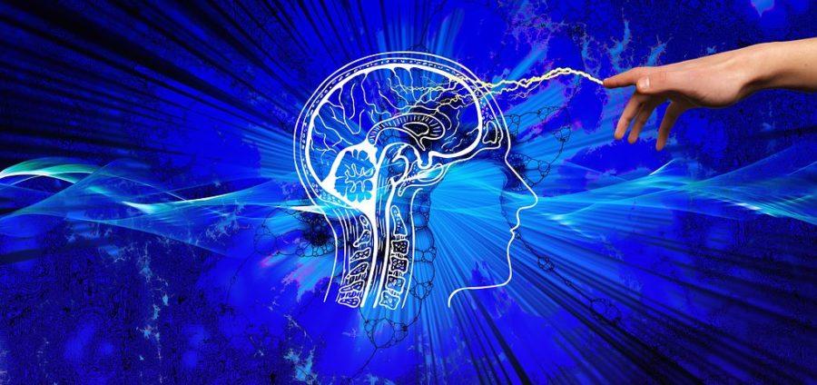 Las Enfermedades Neurológicas Son La Causa De Más Del 50% De Los Casos De Dependencia Por Trastornos Crónicos