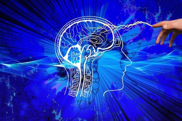 """El Actual """"arsenal"""" Farmacológico Permite Controlar Las Crisis En 3 De Cada 4 Enfermos De Epilepsia"""