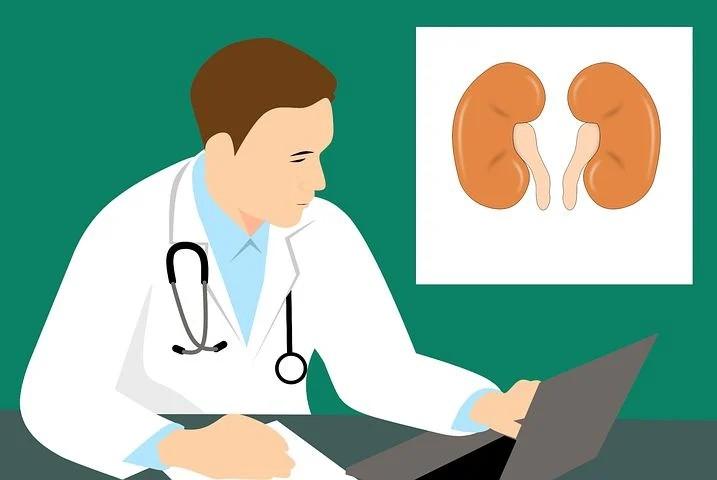 El Diagnóstico Temprano, Clave En El Cáncer Renal, Uno De Los Tumores Más Desconocidos